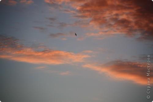 """Здравствуйте! С праздником Вас! .............................................................. Я очень люблю смотреть на небо, люблю его фотографировать, разглядывать облака, наблюдать за пролетающими птицами, самолётами... так хочется иногда лечь на траву и смотреть, смотреть... увы, до дачи из-за экзаменов ещё долго, на море в этом году не получается поехать, ехать в парк на велосипеде к озеру - далековато, да и по жаре ездить как-то не очень хочется. Остаётся пока что одно - смотреть в окно... В этом тоже есть свои плюсы, можно по фотографировать не с земли, а с высоты 8 этажа:))) Потом можно сравнивать времена года: двор летом, двор осенью и т.д., двор днём, вечером, двор в пасмурную и солнечную погоду..С балкона иногда такой закат бывает...   Так вот, мне очень захотелось поделиться своей маленькой """"коллекцией"""" фотографий неба и видов из окна. Далее идут четыре самых запомнившихся в этом году заката. Первый:  фото 5"""