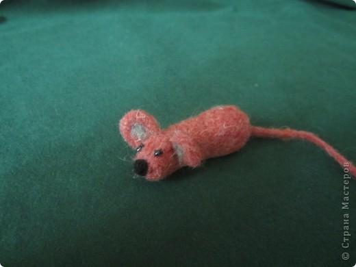 моя самая первая мышка фото 1
