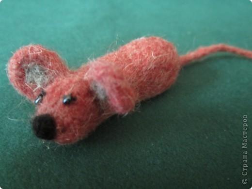 моя самая первая мышка фото 2