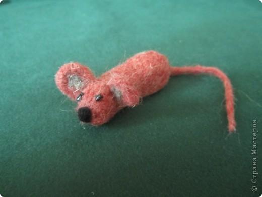 моя самая первая мышка фото 3