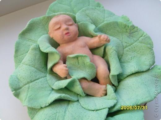 Конечно же в капусте. Вот такой ребятенок, пробую лепить младенца. Пока вот такой малыш получился, мальчик или девочка не знаю, все скрыто листочком. Хотя вроде девочку хотела))) фото 3