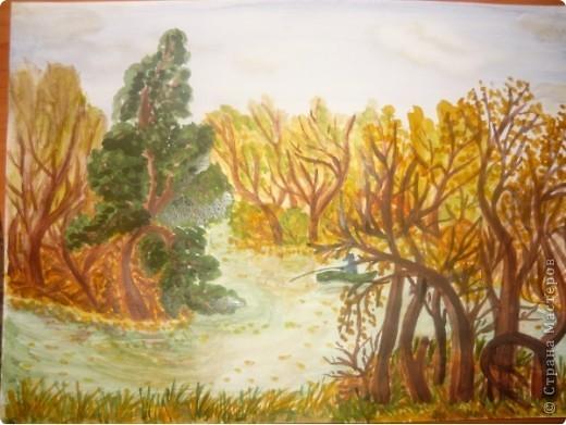 дождливый лес фото 3
