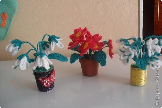 Мои цветы Ландыши и примула. фото 1