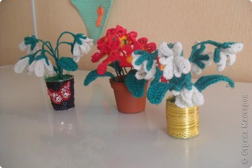 Мои цветы Ландыши и примула. фото 5