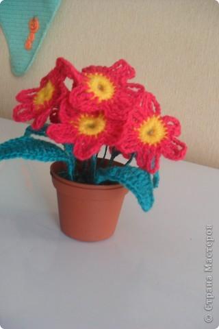 Мои цветы Ландыши и примула. фото 3