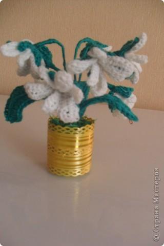 Мои цветы Ландыши и примула. фото 4