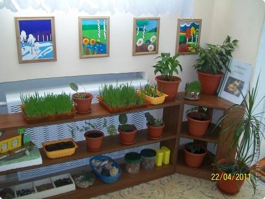 Экологическая лаборатория  фото 1