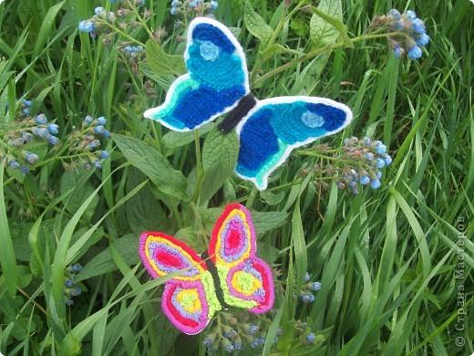 Бабочки-оригами. фото 6