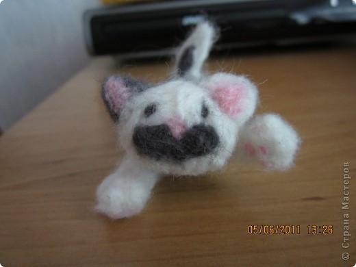 этого котёнка я делала на заказ (хотя мне все во лишь 12 лет) фото 1