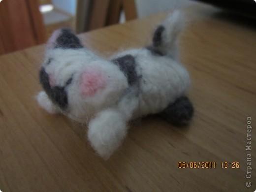 этого котёнка я делала на заказ (хотя мне все во лишь 12 лет) фото 2