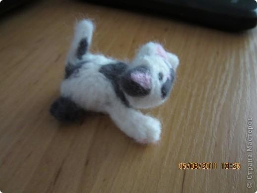 этого котёнка я делала на заказ (хотя мне все во лишь 12 лет) фото 3