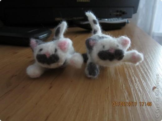 этого котёнка я делала на заказ (хотя мне все во лишь 12 лет) фото 4