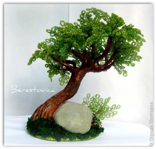 Деревья-переделки фото 4