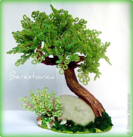 Деревья-переделки фото 5