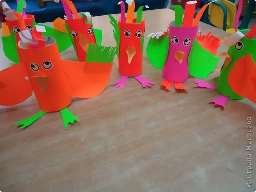 Разноцветные попугаи фото 4
