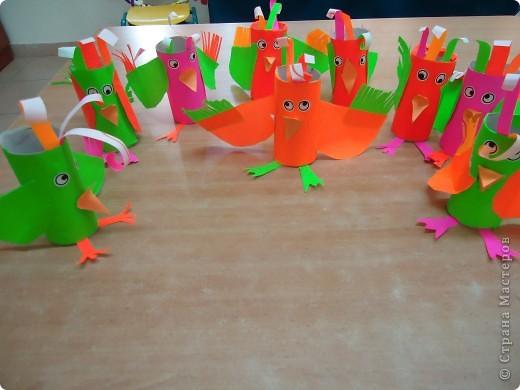 Разноцветные попугаи фото 3