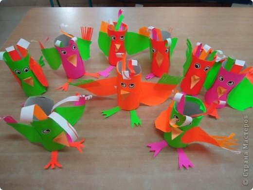Разноцветные попугаи фото 2