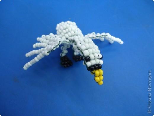 Белый лебедь фото 2