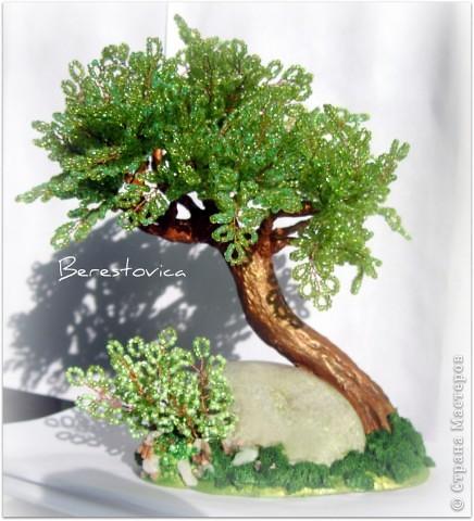 Деревья-переделки фото 6