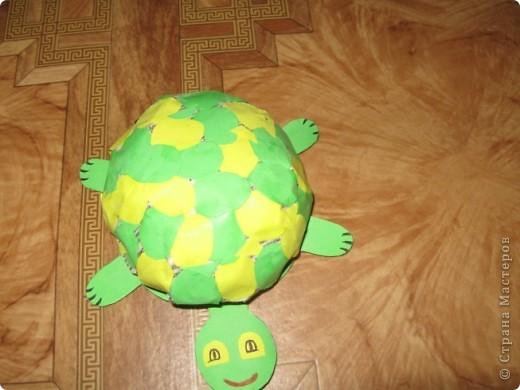 Вот такую черепашку мы сегодня будем делать для работы нам нужно газета ножницы клей ПВА зеленый картон цветная бумага  фото 1