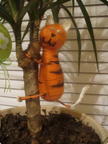 Котик на дереве фото 3