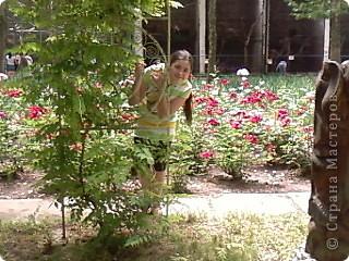 Мы возле входа в Зоопарк фото 17