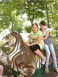 Мы возле входа в Зоопарк фото 21