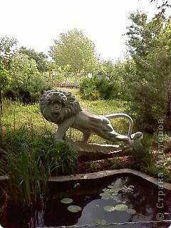 Мы возле входа в Зоопарк фото 46