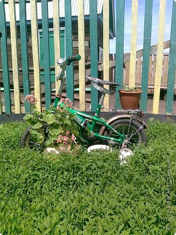 Велосипед внука фото 1