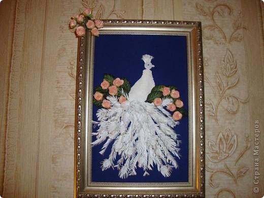 На эту работу сподвиглась, увидев великолепного павлина Ольги Ольшак. Цветочки купила, поскольку не смогла найти подходящей бумаги.  фото 1