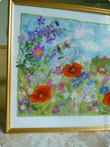 Луговые цветы ! В середине лета самое большое  разноцветье на лугах,полях и в лесу. фото 2