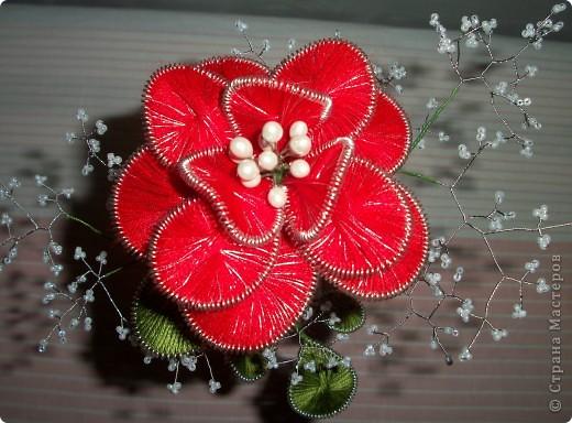 Мой цветок ганутель