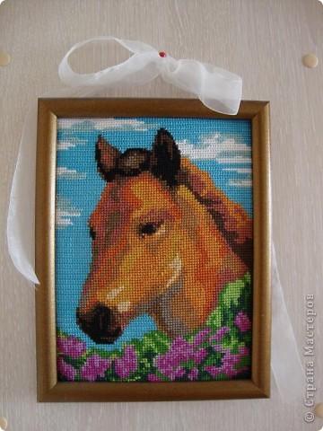 Вышить эту лошадку меня попросил мой сынок, очень она ему понравилась. Такая добрая лошадь в цветах сирени!