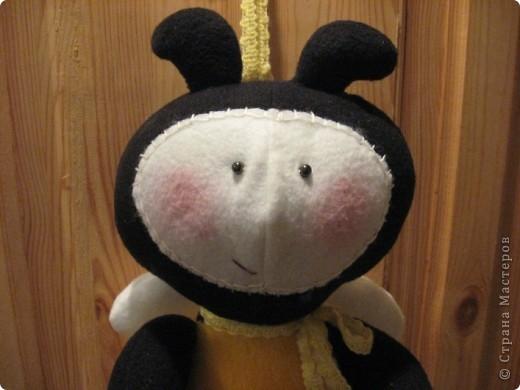 Здравствуйте, все-все-все!!! Сегодня я вас знакомлю со своим новым дружочком-это Пчёла!  Познакомьтесь!!! фото 2