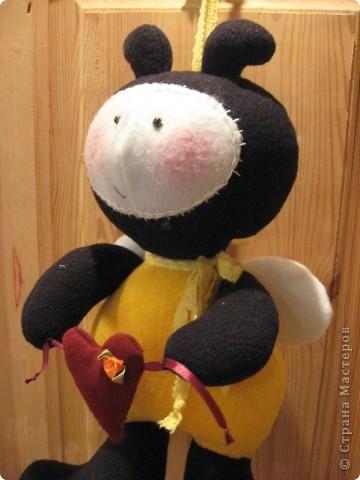 Здравствуйте, все-все-все!!! Сегодня я вас знакомлю со своим новым дружочком-это Пчёла!  Познакомьтесь!!! фото 5