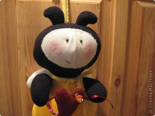 Здравствуйте, все-все-все!!! Сегодня я вас знакомлю со своим новым дружочком-это Пчёла!  Познакомьтесь!!! фото 6