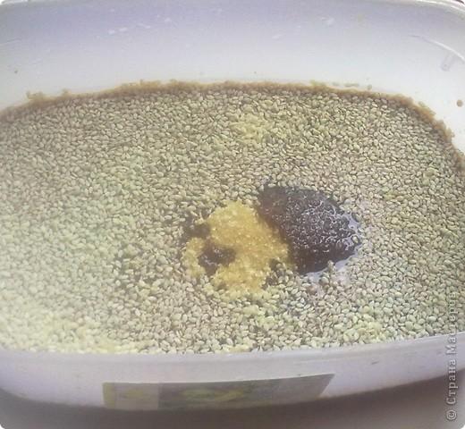 Мини-шашлычки из куриного филе фото 6