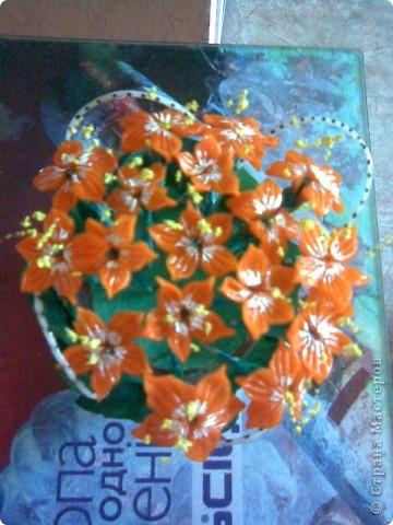 Даже и не знаю,как обозвать мои цветочки)))может зрители подскажут))) фото 4