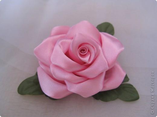 самый первый мой цветок - мак фото 2