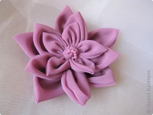 самый первый мой цветок - мак фото 6