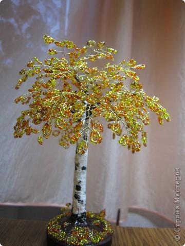 бисерный сад фото 2