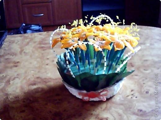 Даже и не знаю,как обозвать мои цветочки)))может зрители подскажут))) фото 3