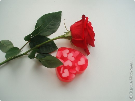 с сухоцветами фото 4