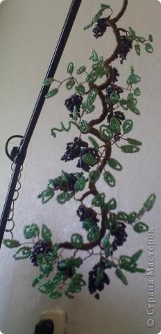 Бисер перламутровый: крупный  использовала на виноград,  более мелкий  - на листики.  фото 2