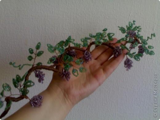 Бисер перламутровый: крупный  использовала на виноград,  более мелкий  - на листики.  фото 3