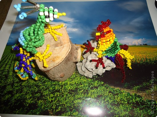 Петушок и павлин фото 2