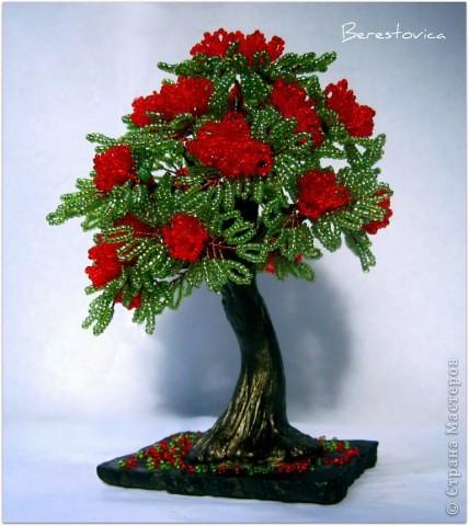 Напоследок решила сделать деревья с такими экзотическими названиями))  фото 2