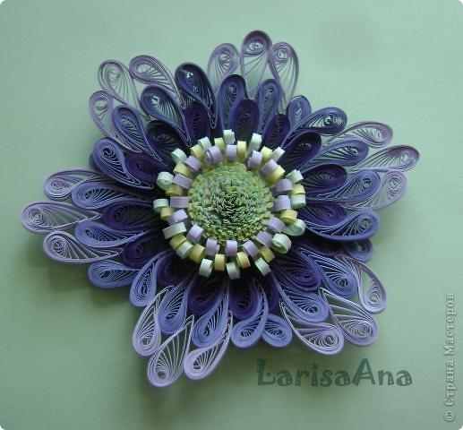 """Всем доброго дня! В блоге Хомячок Challenge стартовало Квиллинг-задание №  1 - """"Соло""""   Для этого задания я сделала такой цветок: Серединка три полосочки разного цвета по 1,5см - бахрома, завитушки трёх цветов. В цветочке 6 лепесточков ,  в лепесточке  10 """"капелек"""" по 2мм, диаметром 14мм, разного оттенка."""