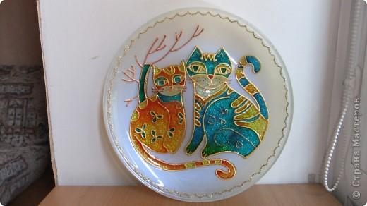Толстый, праздничный котейка. фото 4