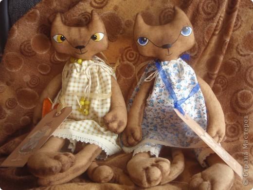 Вот такие кошечки пошились у меня после того, как я увидела кошек Яны Яхиной. Очень понравились - не смогла удержаться - сама нарисовала выкройку и сшила. фото 1